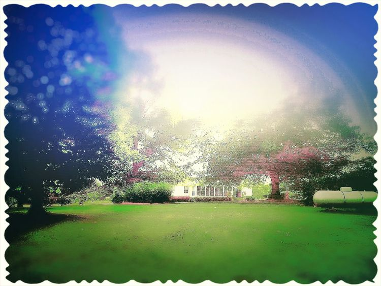 My Roots Old Stompin Grounds The Old Homestead Camera 360 App Oak Trees Propane Tank House Where I Come From
