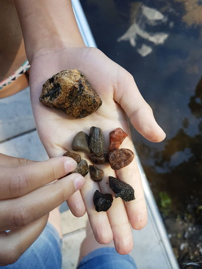 Collecting Stones Stones Rocks Hand Hands Showing Hands At Work Stones And Pebbles Stones And Water Stones N Rocks
