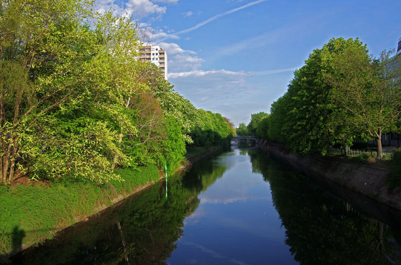 Landwehrkanal Babbler Berlin Tiergarten Germany🇩🇪 Spring Springtime Water Plant Tree Reflection Nature Sky Tranquility Tranquil Scene Green Color No People Beauty In Nature Day Growth Cloud - Sky Outdoors
