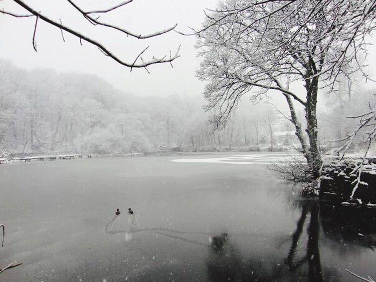 My Winter Favorites First Eyeem Photo
