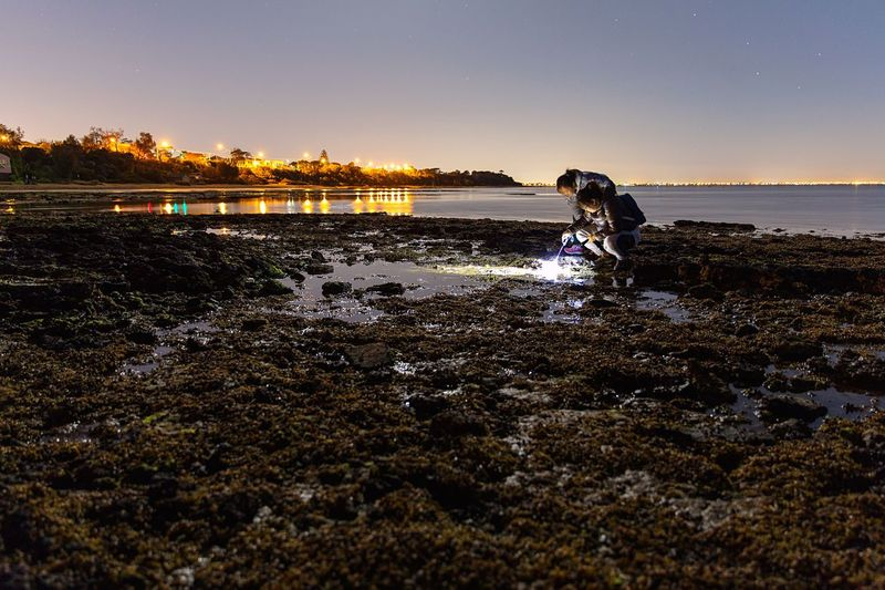 Women Researching On Rocky Shore At Night