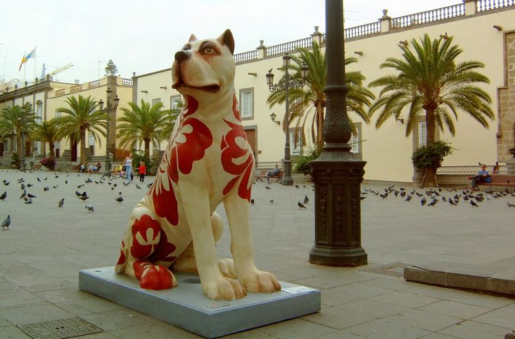 Animal Representation Art Art And Craft Canary Islands Dog Gran Canaria History Las Palmas One Animal Perspective Pets Sculpture Statue