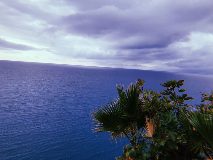 Cloud - Sky Beauty In Nature Sky Plant Water Sea Scenics - Nature Nature