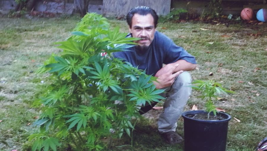 Me and a couple of my plants 4/20 Pic's,4/20 Chicks&bong Babes High Life Taking My Meds..:) Me &my2016 Crop