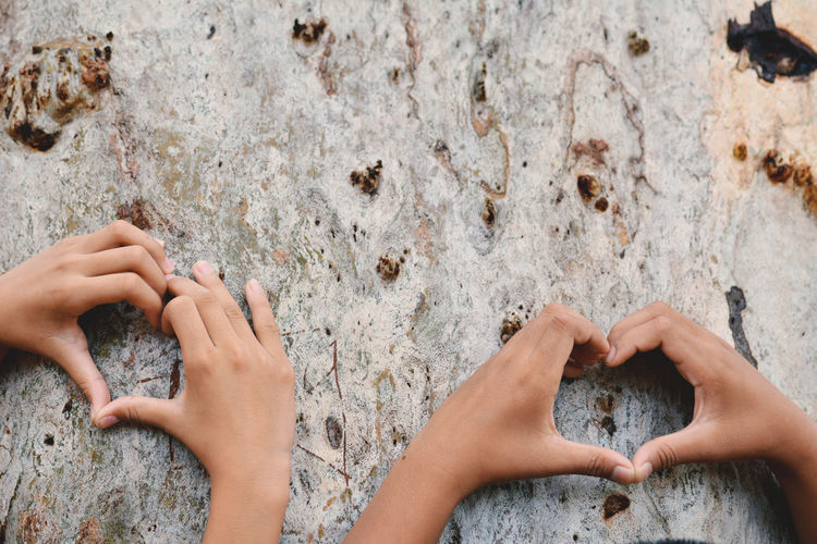 Cropped image of children hands making heart shape on tree trunk