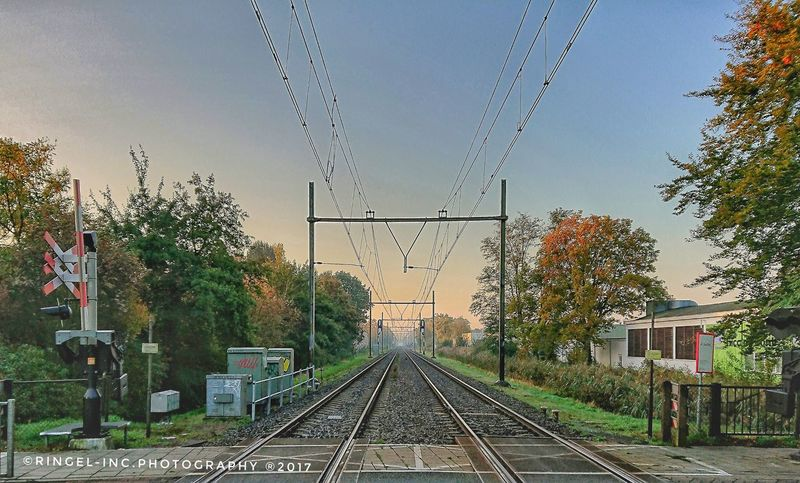 Train track in the rising sun . Tree Outdoors No People Day Sky Nature Clear Sky Fooling Around ^_^ XperiaXZ1 Photography Hello World Travel Destinations