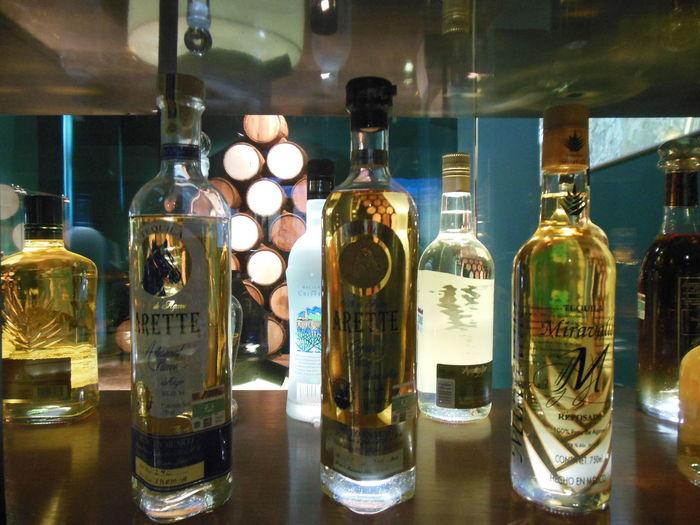 Jalisco esta orgulloso por ser uno de los principales promotores en tequila a nivel mundial Tequila Mariachi Agave