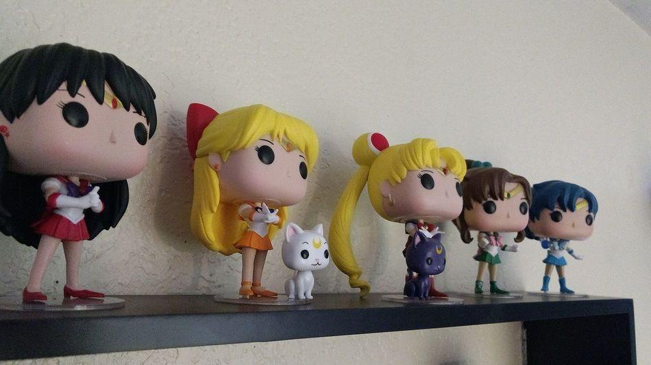 No People Indoors  Close-up Sailor Moon