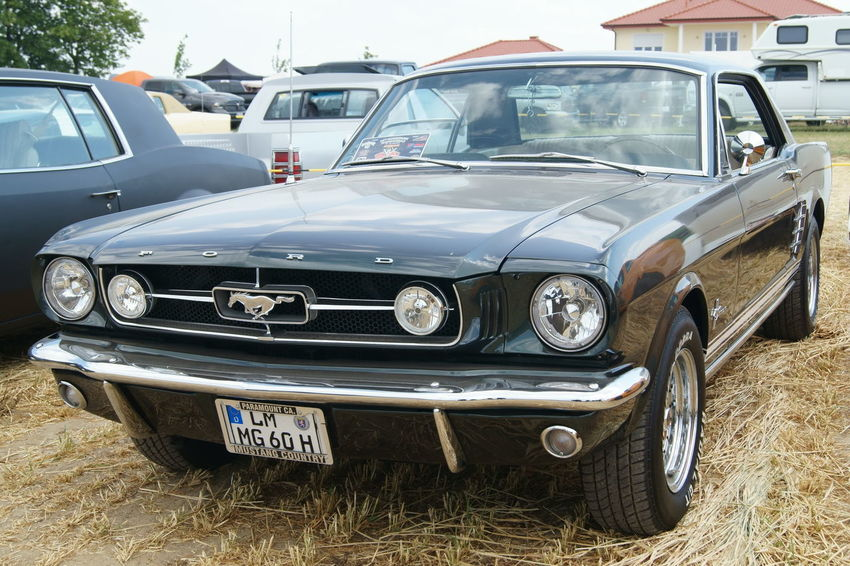 Car Car Show Day Muscle Cars Mustang Outdoors Transportation US Cars V8