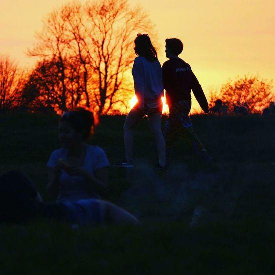 Tree Sunset Friendship Togetherness Sky Sun