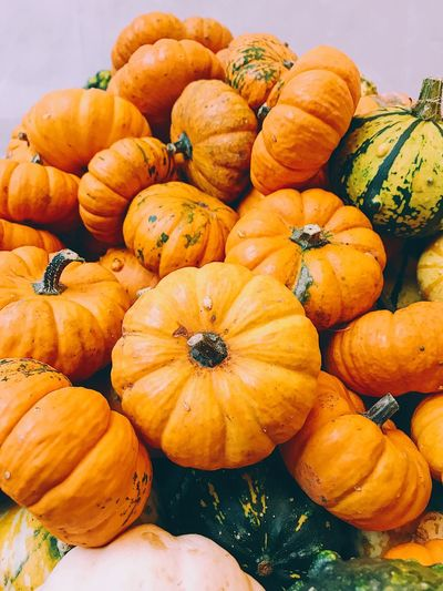 Pumpkin Halloween Orange Color Vegetable Autumn Squash - Vegetable Food Food And Drink Gourd No People Abundance Freshness Day Healthy Eating Nature Close-up Outdoors Pumpkins Pumpkinseason Agriculture Halloween Pumpkin Season Variation Plant Backgrounds
