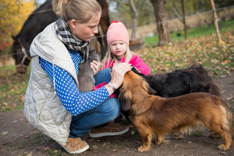 Happy family-mother with  children hugging and feeds pets dogs, cats and goats in countryside farm
