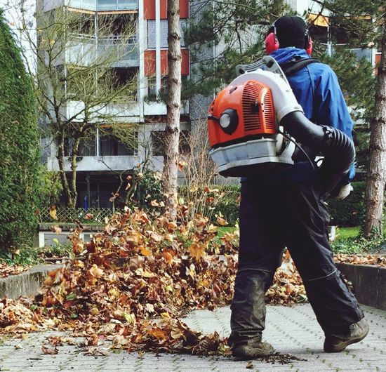Rear View Autumn Change Nature Fall Leaves Fall_collection Leading Lines Leaf Blower Workers At Work Nature In The City EyeEm Nature Lover Eyeemphonephotography Urban Exploration