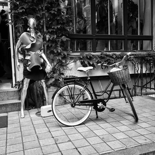 Streetview in Berlin, Germany Bicycle Transportation Mode Of Transport City Bicycle Basket Style Fashion Clothes Design Lifestyle Lifestyle Photography Beauty Fashion Photography Fashionable Fashionphotography Leaves Window Wall