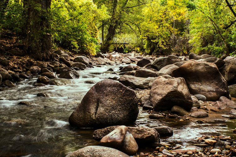 rocks Rock Creek Boulder Water Trees Tree