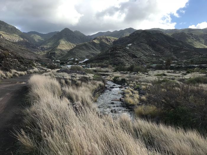 Creek Natures Magic Natur Bachlauf Wanderung El Risco Gran Canaria Canarian Winter Hike Mountains Mountain Silence BACH Mountain Landscape Nature Beauty In Nature Sky Day Outdoors Grass Water No People EyeEmNewHere