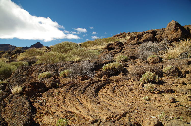Ropy lava in the foreground Beauty In Nature Day Geology Landscape Las Cañadas Las Cañadas Del Teide Lava Field Lava Fields Nature No People Outdoors Pahoehoe Rock - Object Rope Lava Volcanic Landscape