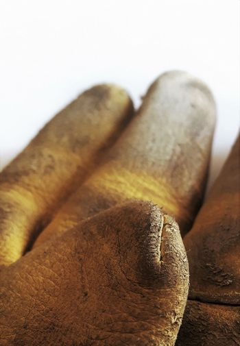 Work gloves well used Lusk Wyoming Close-up Day Dirty Indoors  Leather Glove No People White Background