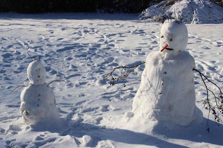 It's Cold Outside Snow Snowman Schnee Schneemann Winter