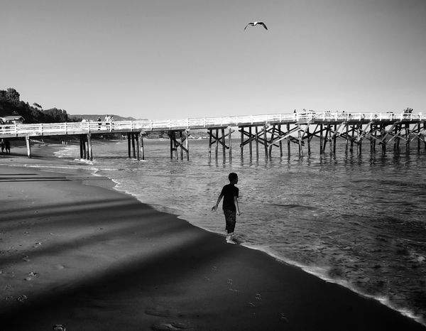 Bridge Over Water Beach Bird Flying Boy Kids_of_our_world The Great Outdoors - 2017 EyeEm Awards Light And Shadow Shades Of Light Eye4photography  Shootermag A Week On Eyeem EyeEm Best Shots Eyem Collection EyeEm Gallery Sunset Sihouette  Water_collection Black & White Eyem Nature Lover Outdoors Vacations Sand Clear Sky