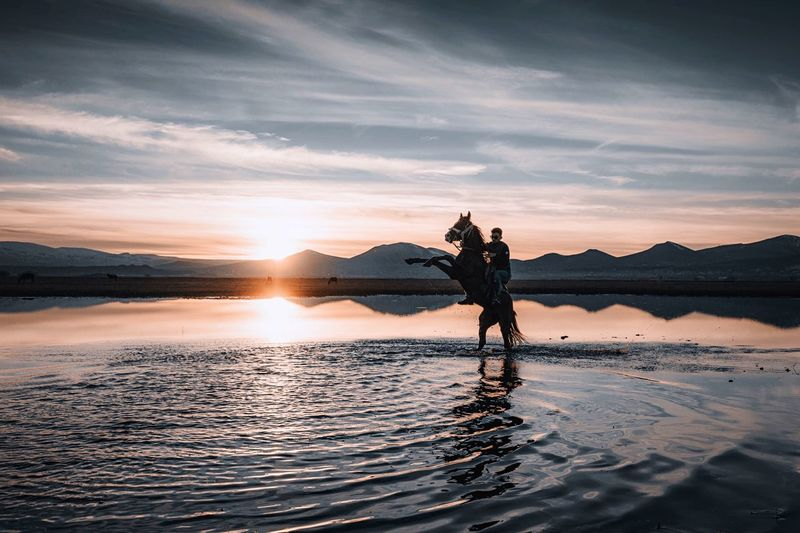 Rural Horse Water Sky Sunset Sea Standing Cloud - Sky Nature One Person Adult Beauty In Nature Men Beach Reflection Land Real People Lifestyles Leisure Activity Scenics - Nature Outdoors Human Arm