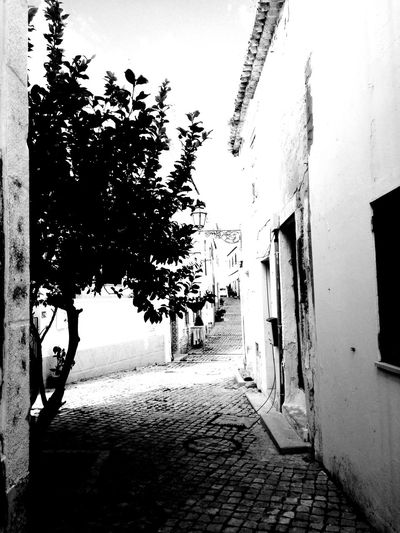 old path in a new city Fotografia Photos Blackandwhite Behindthelens Portugal LoveBW Photography Blackandwhitephotography Art Love Dark Bw_art #EyeEm EyeEm Selects Algarve #blackandwhite #streetphotography Bw #travel #beautiful Portugal_em_fotos Portugal_photography Bw_captures Bnw_planet #photography