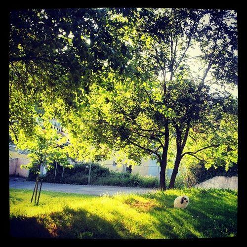 Lapin Spring Nature Finduweekend ...