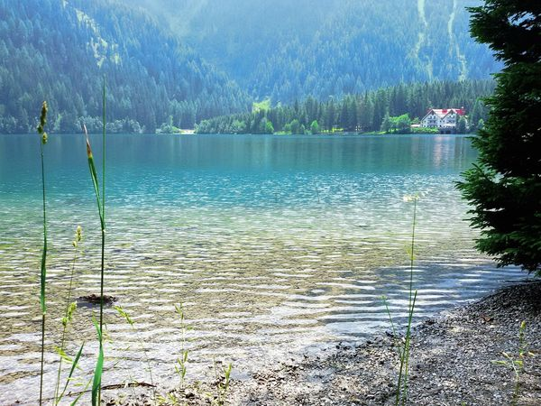 Lake Water Water Tree Tranquility Tranquil Scene Scenics Lake Nature Beauty In Nature Non-urban Scene Mountain Growth Day Vacations Tourism Outdoors Calm Remote Majestic Waterfront Green Color Südtirol EyeEmBestPics EyeEm EyeEm Gallery