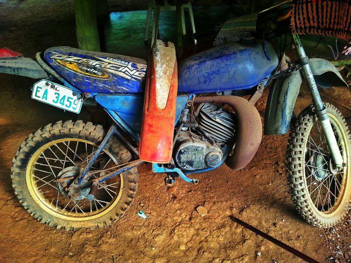 Road Bikes don't die. They just fade away. #bikes #decommisioned #leisure #oldschool #outdoor #Road #roadbike #vehicle
