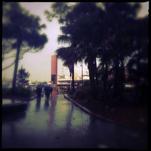 Taking Photos Hipstamatic IPhoneography Rainy Days
