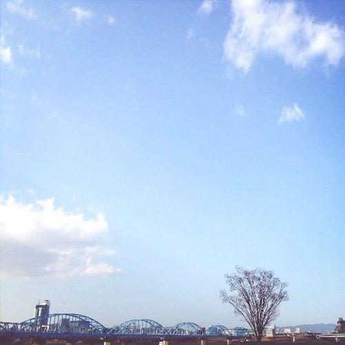淀川 River Walking Osaka,Japan