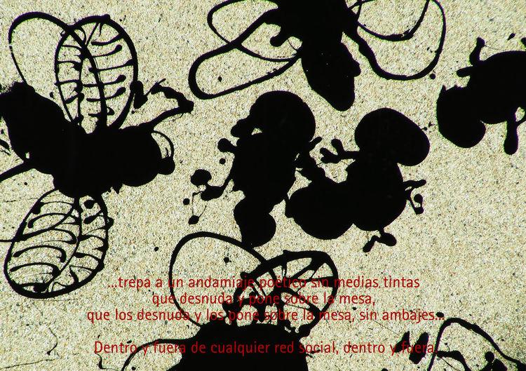 Flies Wall The Human Condition Enjoying The Sun differAnce series