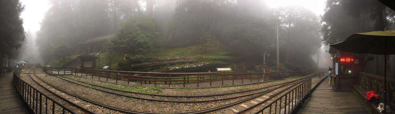 我在高山,看著高山鐵路,細細感受片刻高山的寧靜
