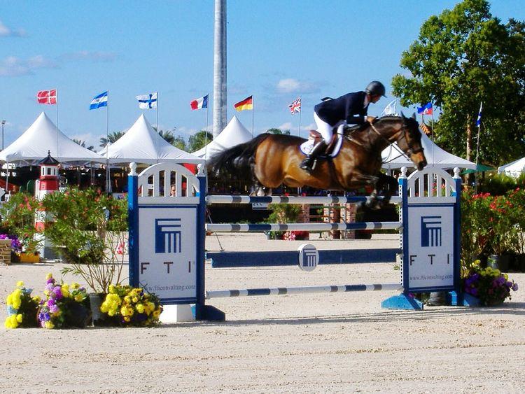 Horse Outdoors Jumping Florida Showjumping