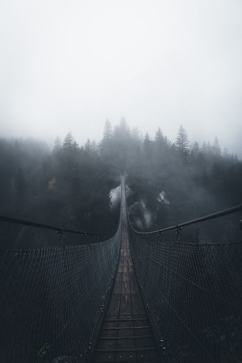 Architecture Bridge Bridge - Man Made Structure Built Structure Connection Day Diminishing Perspective Direction Fog Footbridge Nature No People Outdoors Plant Rope Bridge Scenics - Nature Sky The Way Forward Tree