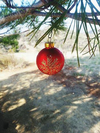 Came upon this Christmas ornament :)