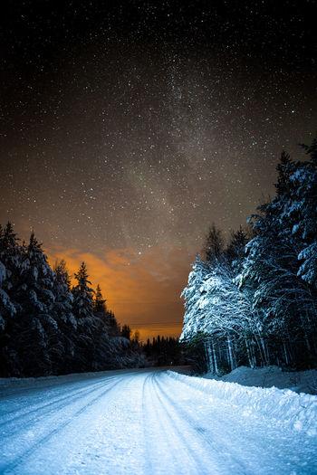 Lapland Star