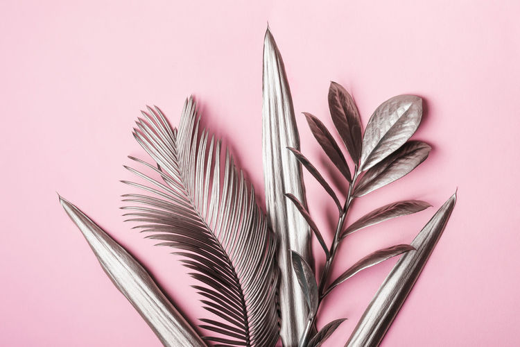 Close-up of pink leaves on table