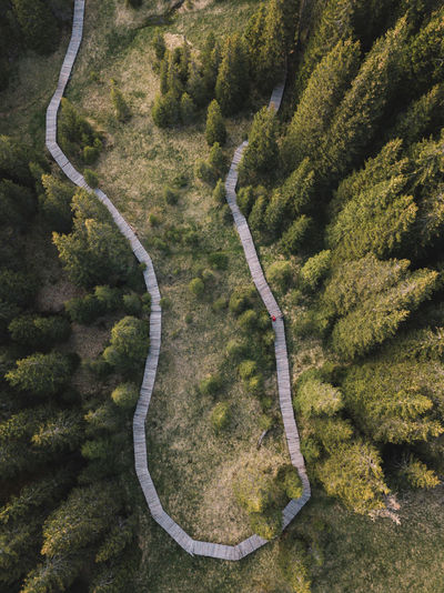 Aerial Shot Aerial Photography Aerial View Beauty In Nature Curve Day Environment Forest Green Color High Angle View Land Landscape Mountain Road Nature No People Non-urban Scene Outdoors Plant Road Scenics - Nature Tranquility Transportation Tree Winding Road WoodLand The Great Outdoors - 2018 EyeEm Awards