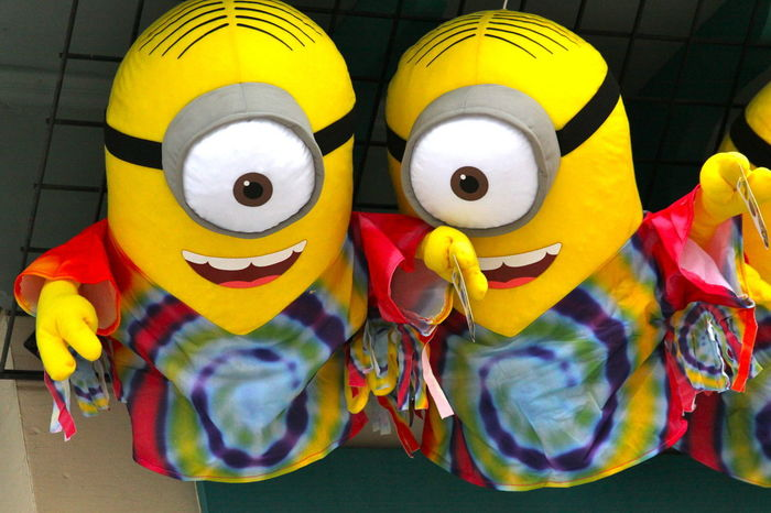 Celebration Close-up Day Decorations Indoors  Minion Love Multi Colored No People
