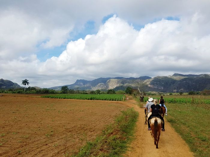 EyeEm Selects Riding Mountain Two People Cloud - Sky Landscape Rural Scene Agriculture Speed Outdoors People Transportation Adult Adults Only Sky Nature Mountain Range Horses Horseback Riding Tobacco Field Tobacco Plantation Cuba Valle Vinales Pinar Del Rio Tourism