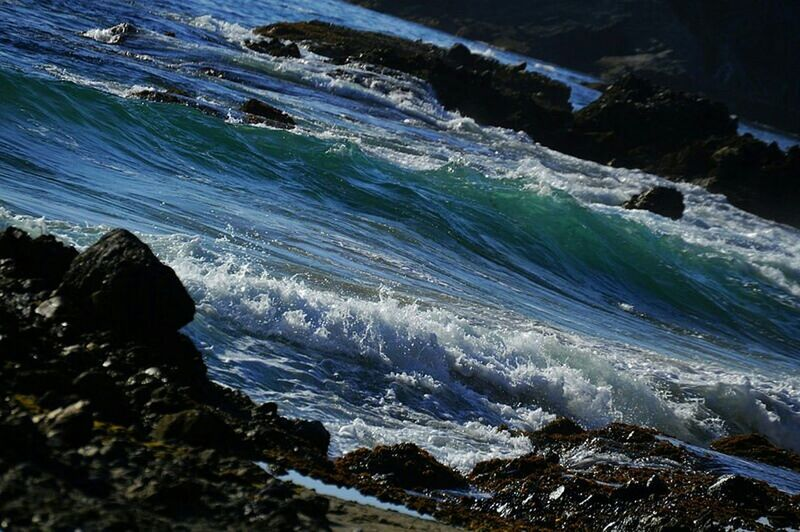 The Great Outdoors - 2015 EyeEm Awards Naturephotography Mobilephotography Eyeemphotography Seashore By The Seaside Tidepools Victoria Beach Laguna Beach Protecting Where We Play