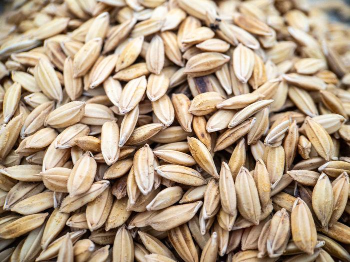 Full frame shot of wheat