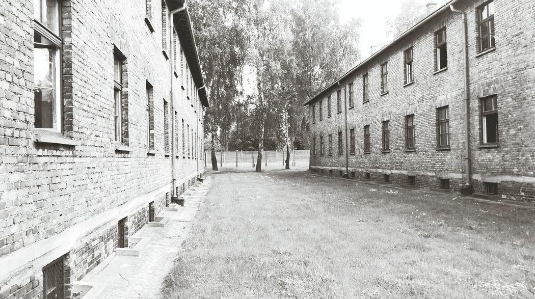 Ww2 Poland Konzentrationslager Auschwitz Silence Is A War Crime