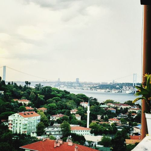 Istanbul Bosphorus Bridge Landscape Sea Sky Forest City Cityscape Bridge - Man Made Structure City Life Architecture Building Exterior Built Structure Residential Building Water High Angle View Connection Cloud - Sky Residential District Day Cloud Outdoors No People Rooftop First Eyeem Photo