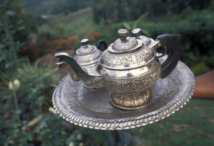Cropped hand on tray with teapots