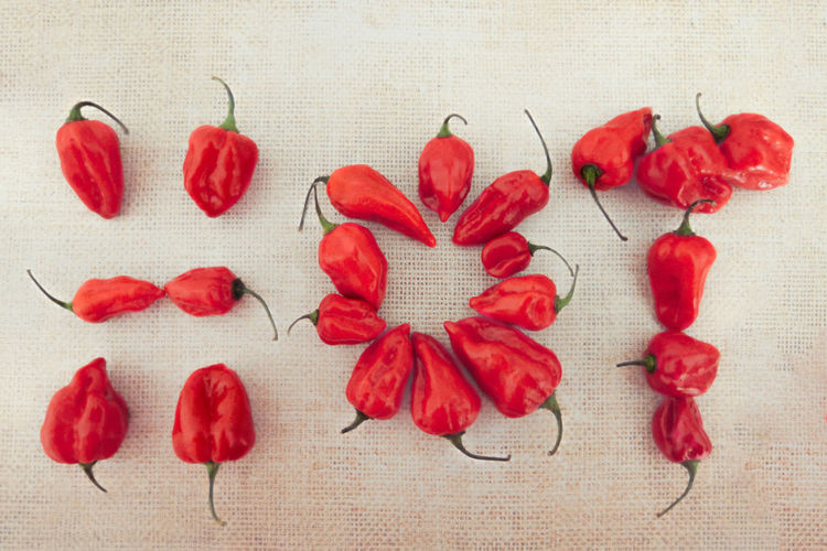Close up of red chilis composition