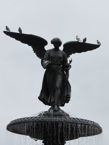 Angel Angel Wings Bird Wings Statue Statue In The City Angel Statue Rock Statue Pigeon Pigeons Rock Pigeon Rock Pigeons Sculpture Grey Sky Fountain Water Fountain Water Clear Water Central Park Central Park - NYC Manhattan New York City