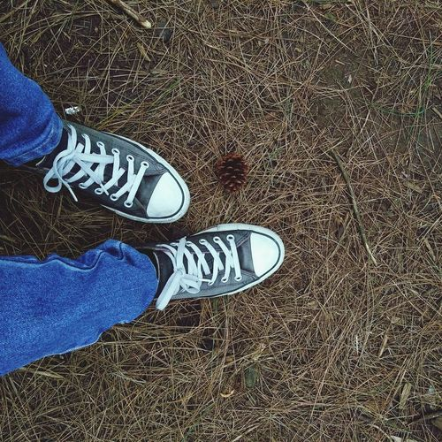 Pinery Converse Converse All Star Shoesselfie Footwear Oldman Jeans Adult Low Section Outdoors Green Morning Walk Yogyakarta Story Central Java, Indonesia