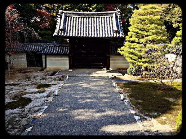 雲龍院 勅使門 The Purist (no Edit, No Filter) Taking Photos Temple Gate